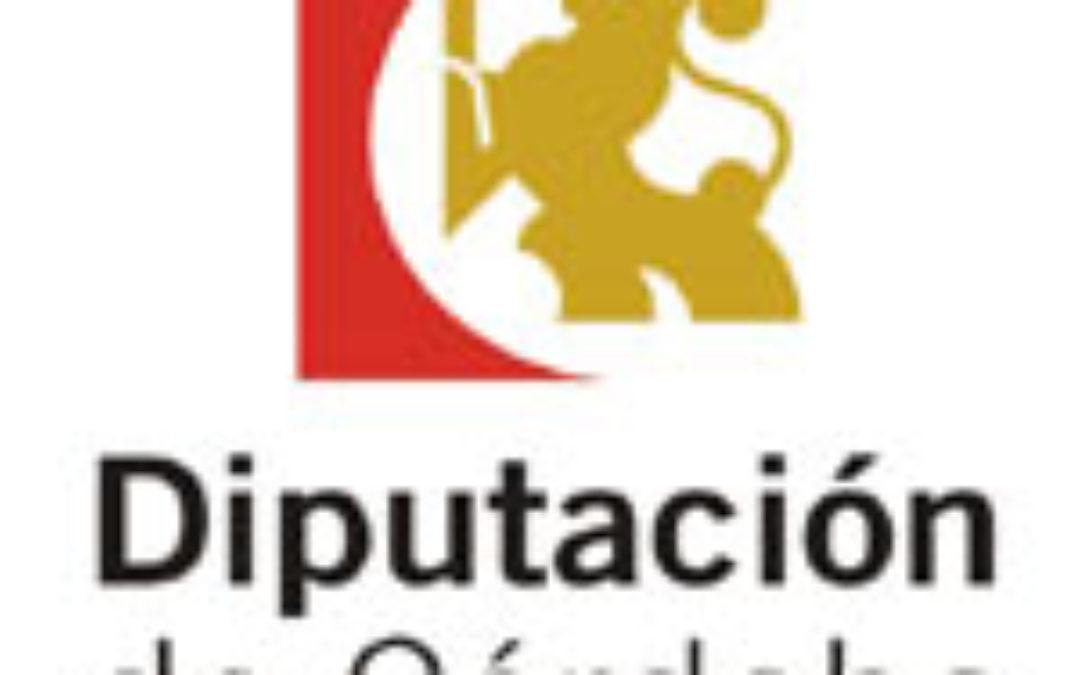 DIPUTACIÓN DE CÓRDOBA Convocatoria de selección de personal Plazo 15/06/2015  1