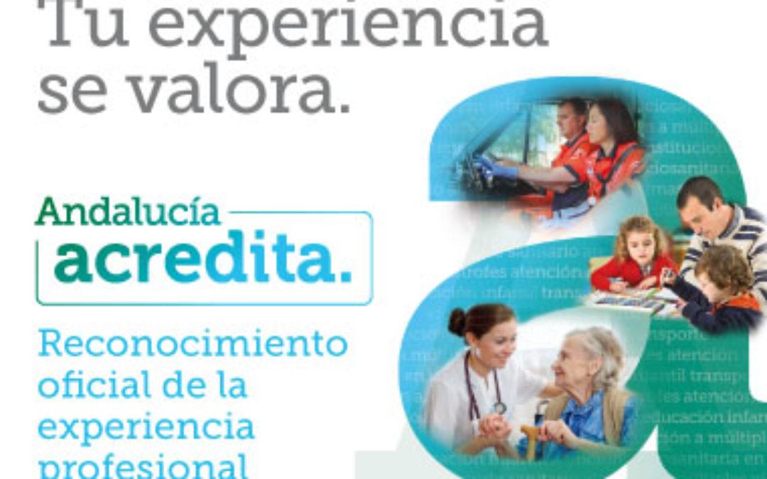 PROCEDIMIENTO DE ACREDITACIÓN DE COMPETENCIAS 1