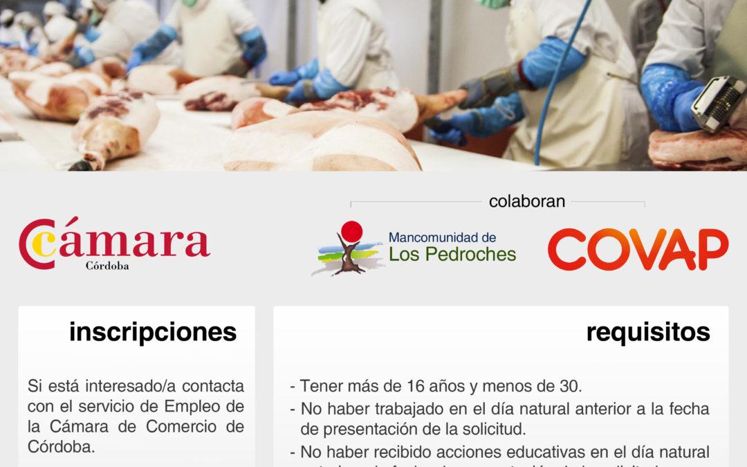 CURSO DESPIECE DE CÁRNICOS – COVAP MANCOMUNIDAD PEDROCHES