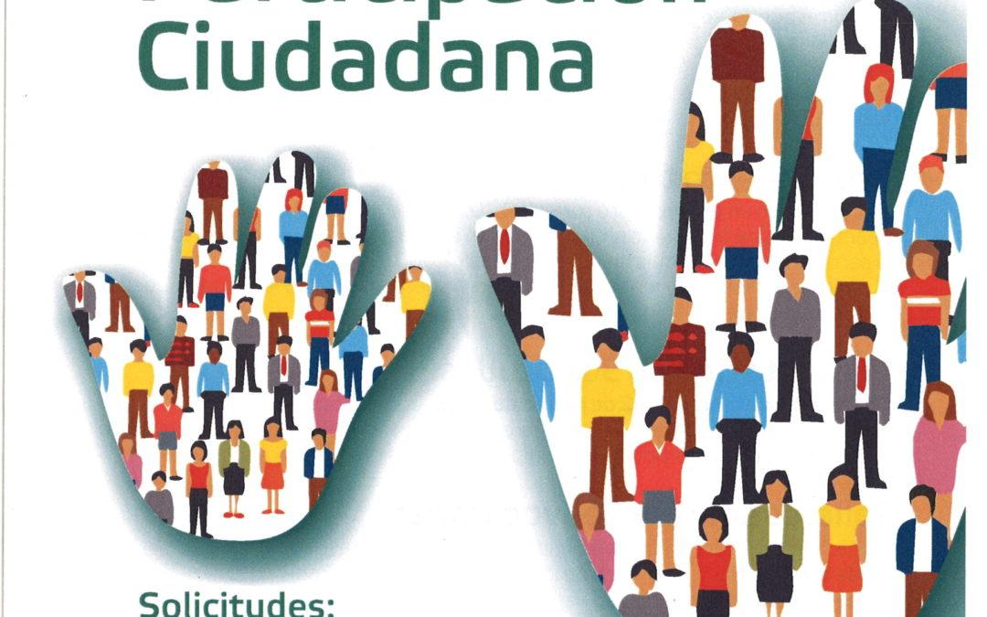CONVOCATORIA DE SUBVENCIONES DIRIGIDAS A ASOCIACIONES PARA PROYECTOS DE PARTICIPACIÓN CIUDADANA 1