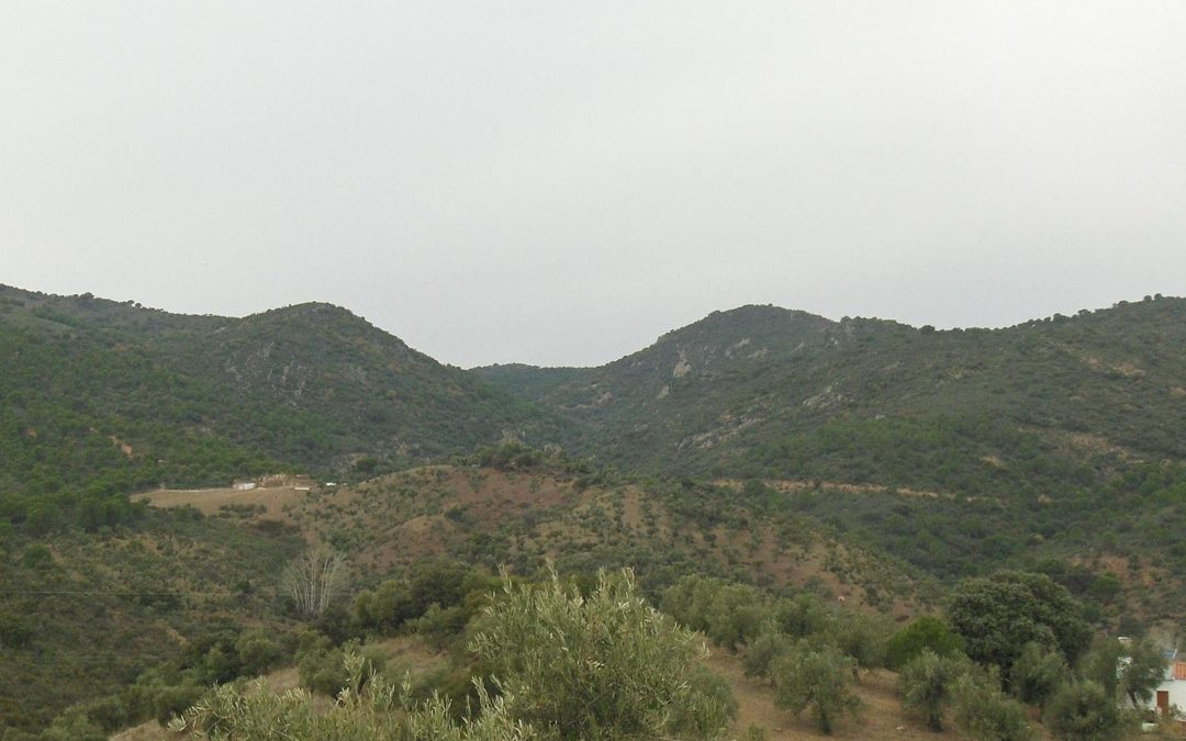 Sierra de Alcaracejos